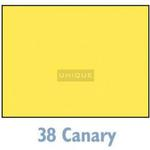 Savage Widetone Seamless Background Paper - 107in.x50yds. - #38 Canary