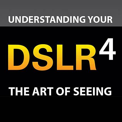 The Art of Seeing: Improving Your Artistic Eye