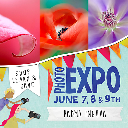 EXPO: Floral Photography with Passion with Padma Inguva (AIP)